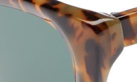 Brown Tortoise/ Olive Lens swatch image