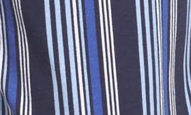 Blue Stripe swatch image