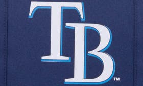 Tampa Bay Rays swatch image