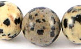 Dalmatian swatch image