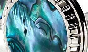 Stainless Steel/ Green swatch image