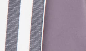Grey Stripe Print swatch image