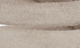 Warm Stone swatch image