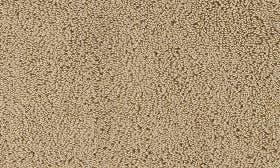 Almond swatch image