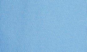 Buccaneer Blue swatch image