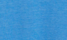 Regatta Blue swatch image