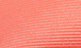 Watermelon swatch image