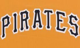 Pittsburgh Pirates swatch image
