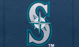 Seattle Mariners swatch image