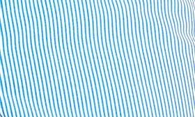 Striped Nautical Blue swatch image