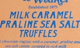 Sea Salt/ Praline Caramel swatch image