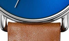 Bourbon/ Blue Sunray/ Silver swatch image