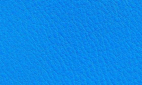Electric Blue Textured swatch image
