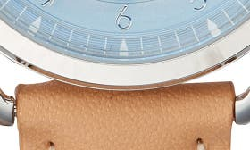 Camel/ Blue/ Silver swatch image