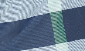 Canvas Blue swatch image