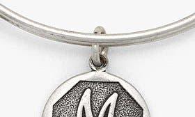 M - Rafaelian Silver swatch image