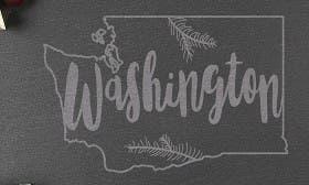 Washington swatch image