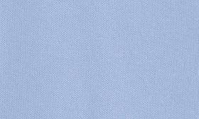 Polar Sky swatch image