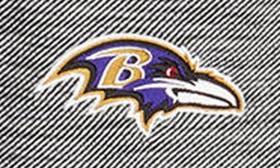 Ravens swatch image