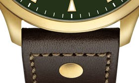 Chocolate/ Green/ Gold swatch image