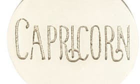 Capricorn - Silver swatch image