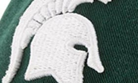 Michigan State Spartans swatch image