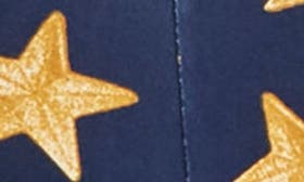 Star Patch Print Varsity Navy swatch image