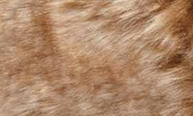Chicory swatch image
