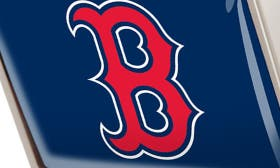 Boston Red Sox swatch image