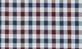 Blue Red Gingham swatch image