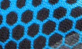 Light Blue/ Black swatch image