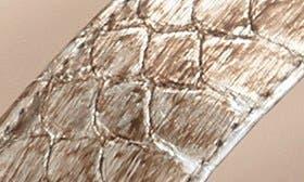 Platinum swatch image