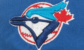 Blue Jays swatch image