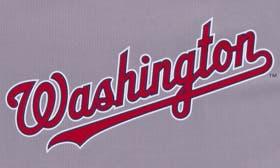 Washington Nationals swatch image