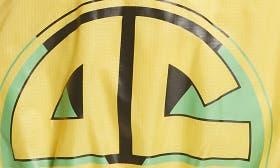 Racer Yellow Multi swatch image