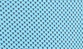 Dodger Blue swatch image