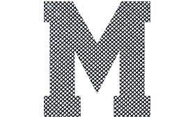 M Fishnet swatch image