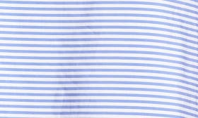 Blue White Stripe swatch image