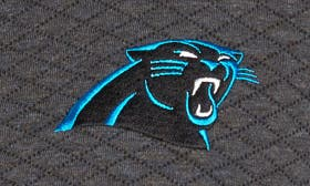 Panthers swatch image