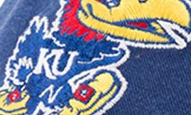 Kansas Jayhawks swatch image