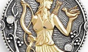 Sagittarius/ Silver/ Gold swatch image