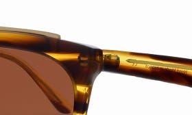 Brown Havana/ Matte Gold swatch image