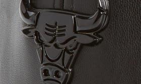 Chicago Bulls swatch image
