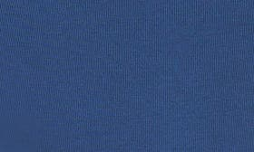 Blue Aster swatch image