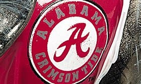 University Of Alabama swatch image