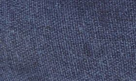 Blue Washed Canvas swatch image