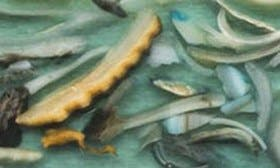 Seashell/ Grey Polar swatch image