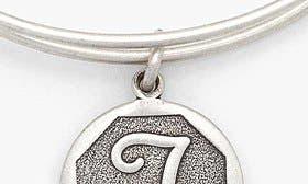 T - Rafaelian Silver swatch image