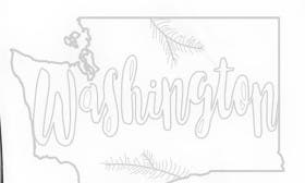 Washington swatch image