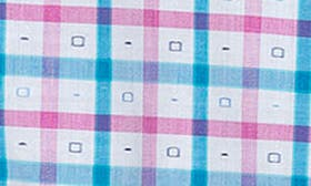 Pink Blue Plaid swatch image